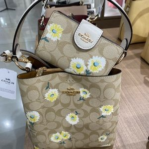 🎀Coach Set Small Town Bucket Bag In Signature Can